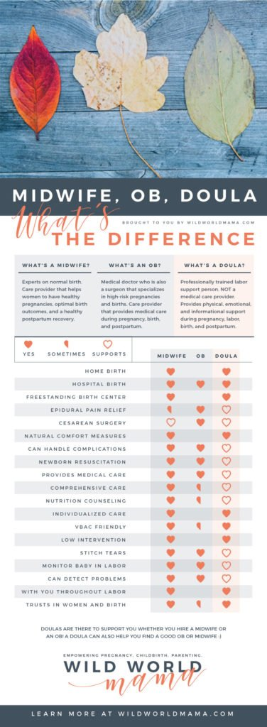 midwife, ob, doula, whats the difference graphic
