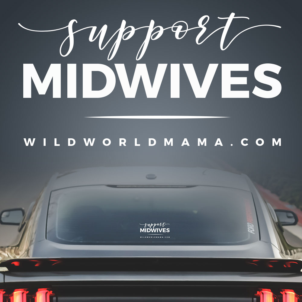 Support Midwives Transfer Stickers