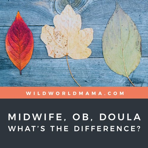 midwife, ob, doula, whats the difference